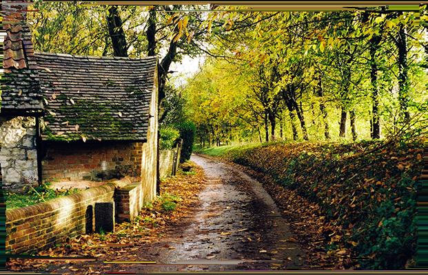 イギリスの暮らしに習う 性能と居⼼地を両⽴した住まい