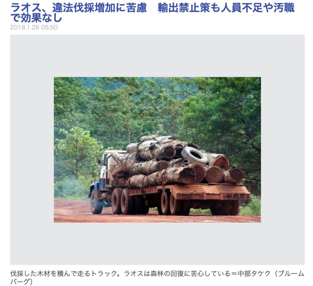 違法伐採, 違法木材
