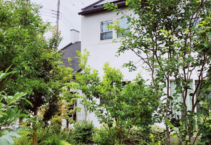 イギリスの家シリーズ,ホークスヘッド