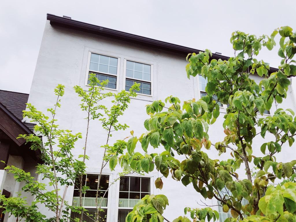 イギリスの家,デザイン名はホークスヘッド