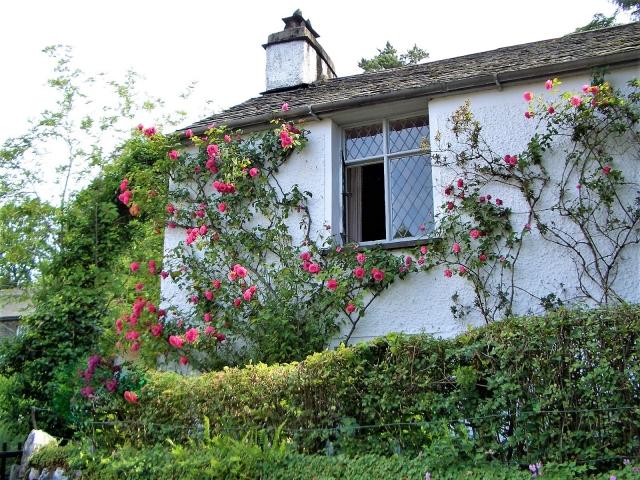バラが建物につたうイングリッシュガーデン
